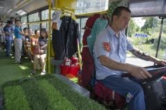 """乌鲁木齐现铺满""""草坪""""公交车"""